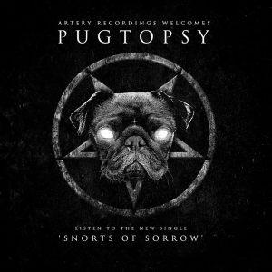 Pugtopsy